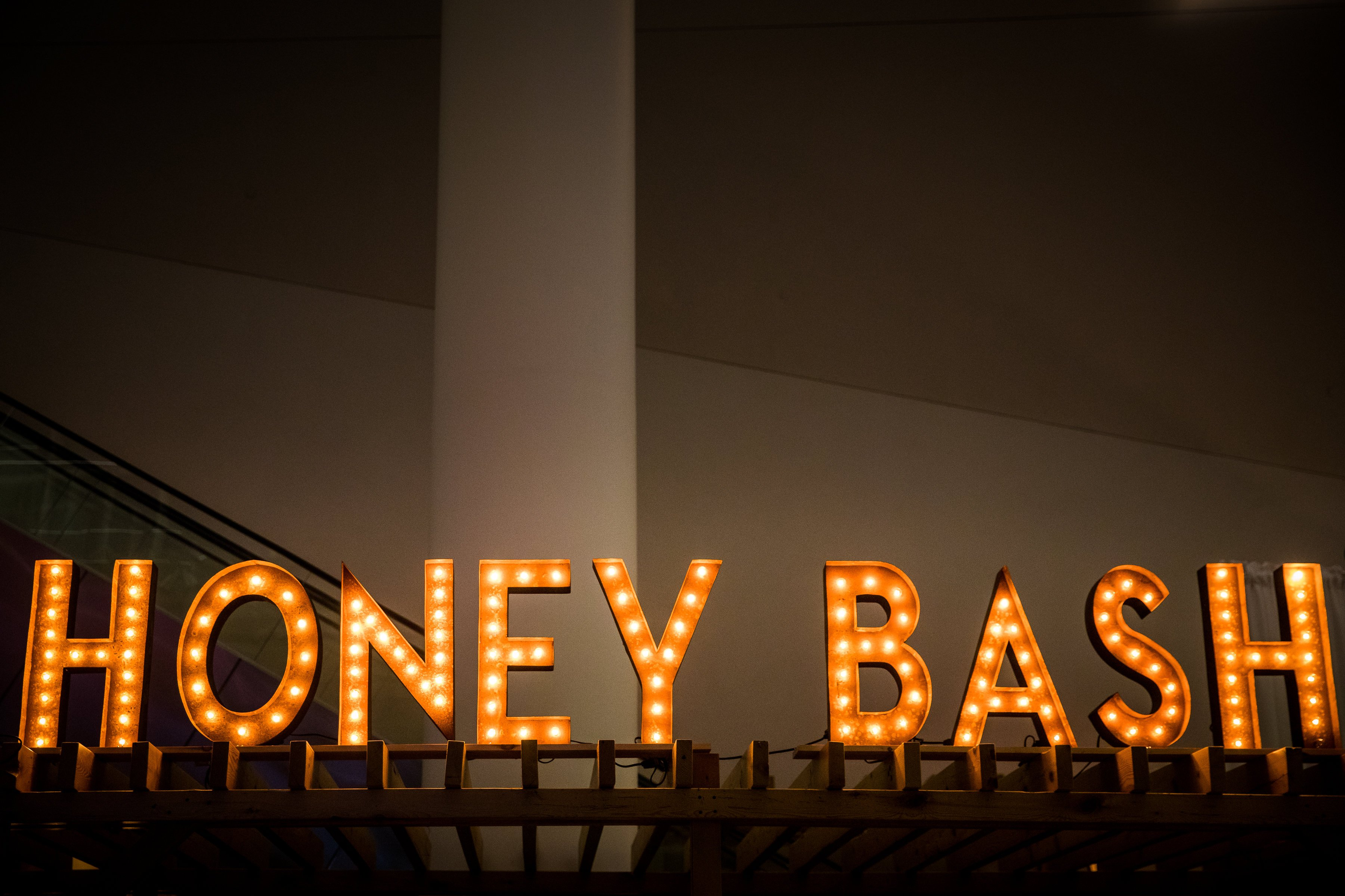 Honey Bash Gala Brain Aneurysm Research 2017